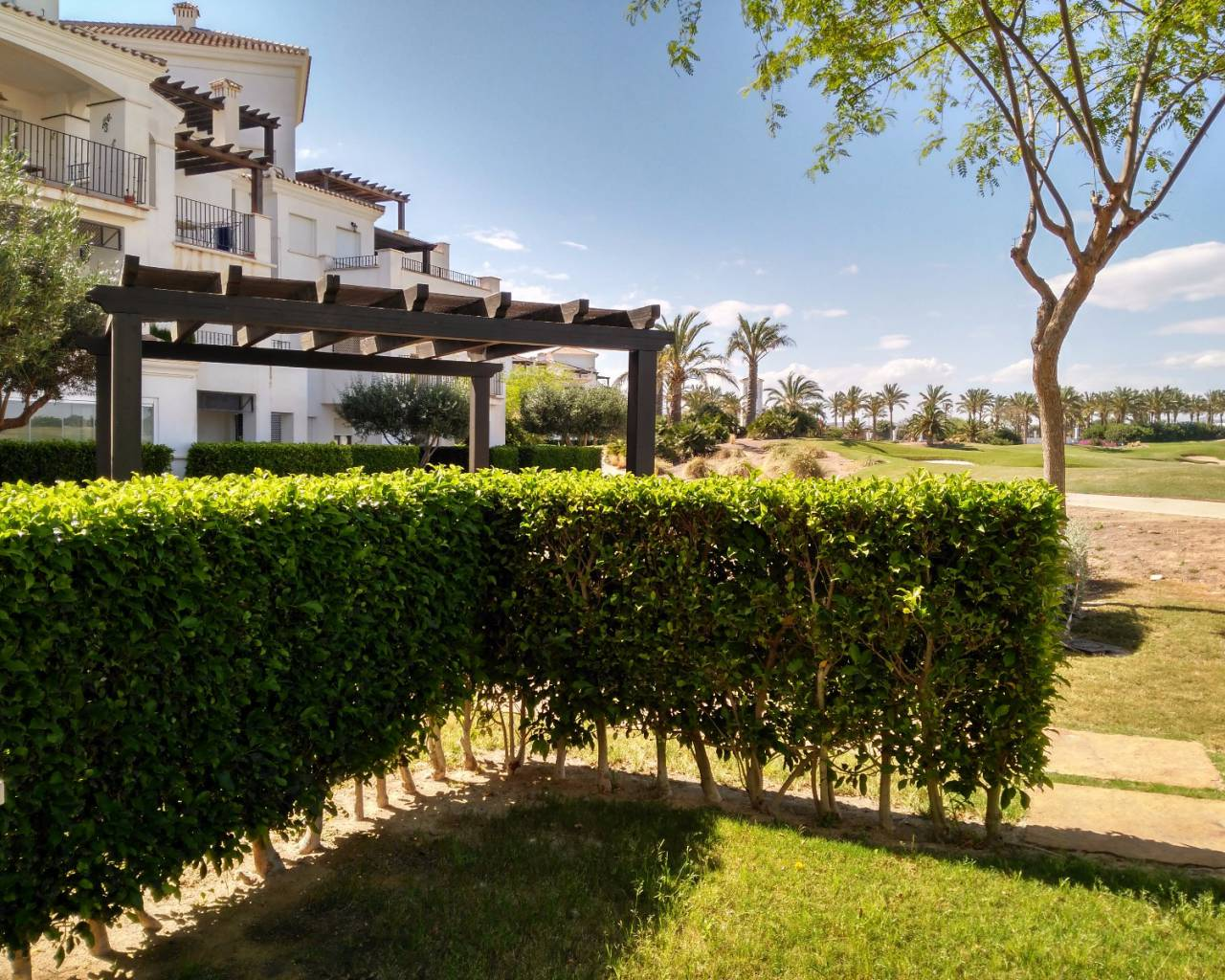 Resale - Apartment - La Torre Golf Resort - La Torre Golf