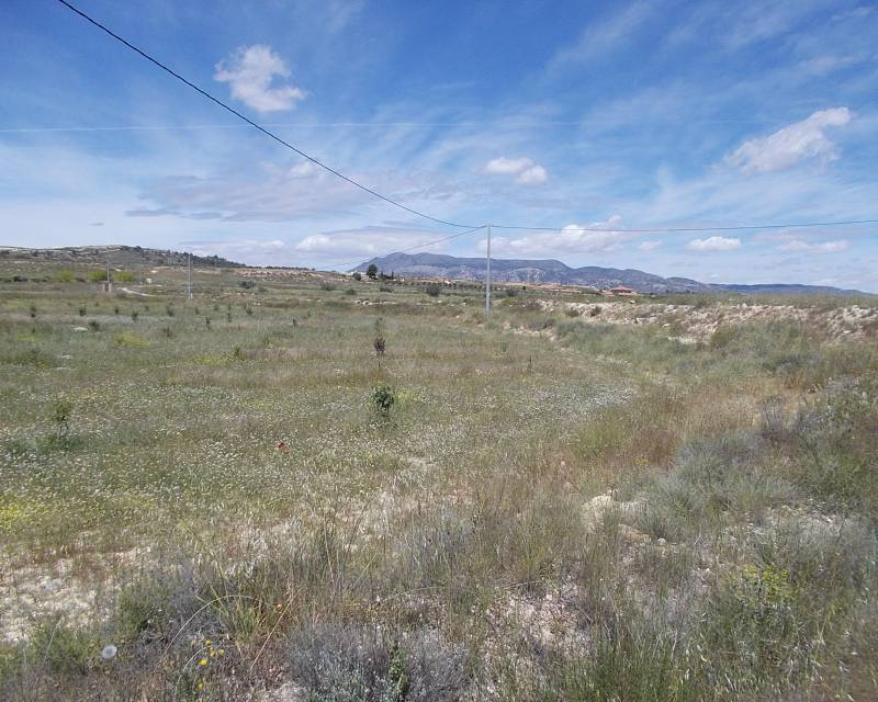 Plot of Land - Resale - Pinoso - Pinoso
