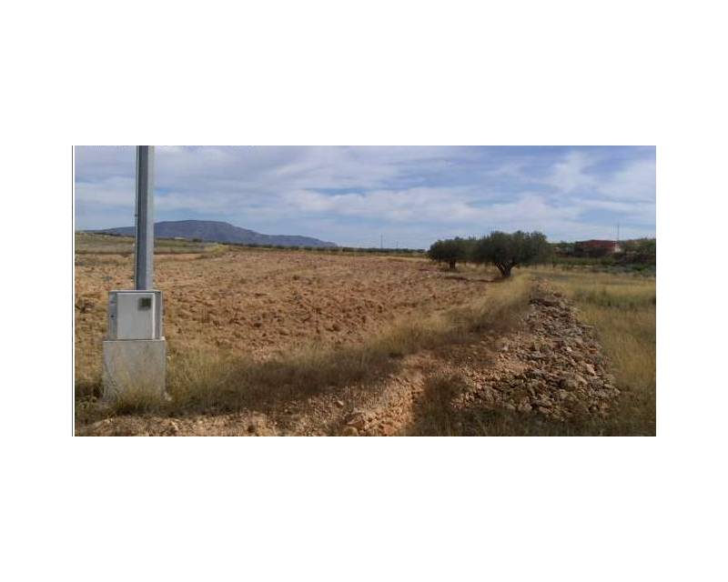 Plot of Land - Resale - Jumilla - Jumilla