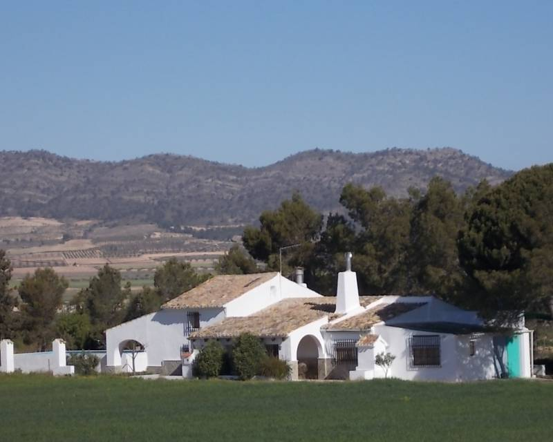 Country Property - Resale - Yecla - Yecla