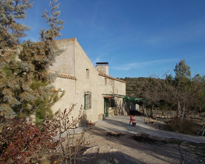 Country Property - Resale - Almansa - Almansa