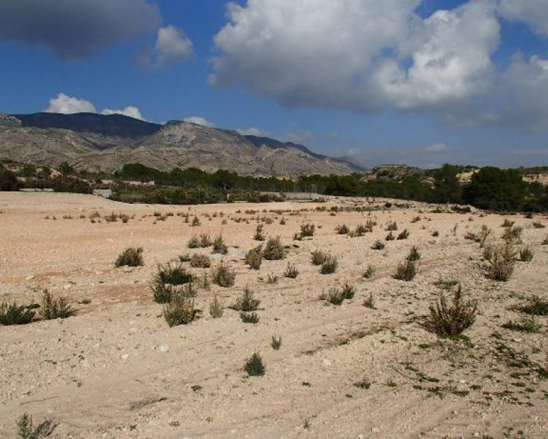 Plot of Land - Resale - Crevillente - Crevillente