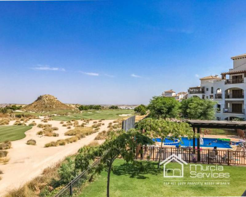 Apartamento - Alquiler larga estancia - Murcia Services Is Your One Stop For All Real Estate Needs In Murcia! - Murcia Services Is Your One Stop For All Real Estate Needs In Murcia!