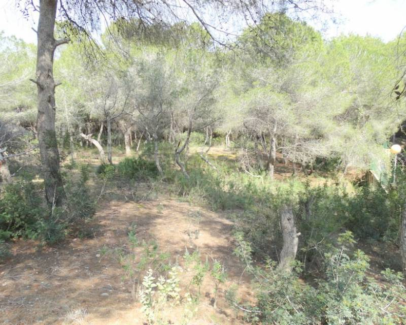 Plot of Land - Resale - Campoamor - Campoamor