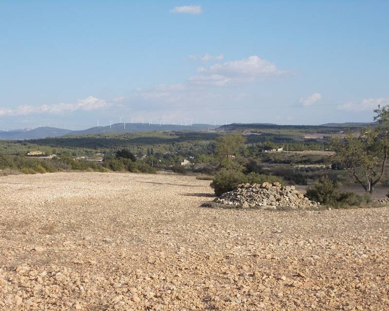 Plot of Land - Resale - Almansa - Almansa