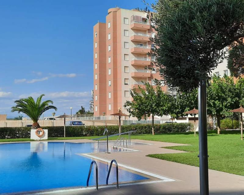 Apartment - Long Term Rentals - Guardamar Del Segura - SUP-7 & Port Area