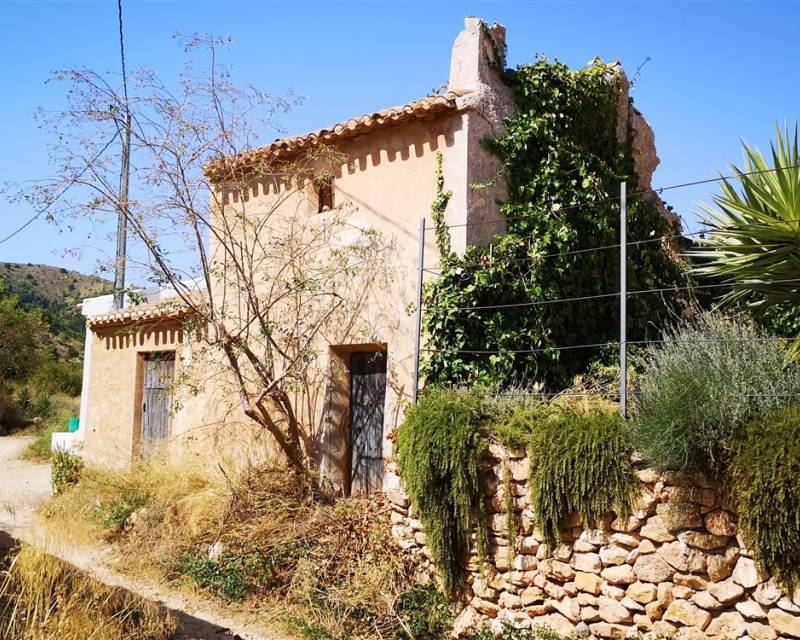 Country Property - Resale - El Mingrano - El Mingrano