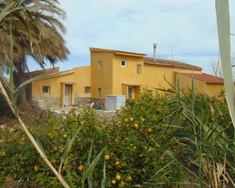 Country Property - Resale - Orihuela - Orihuela